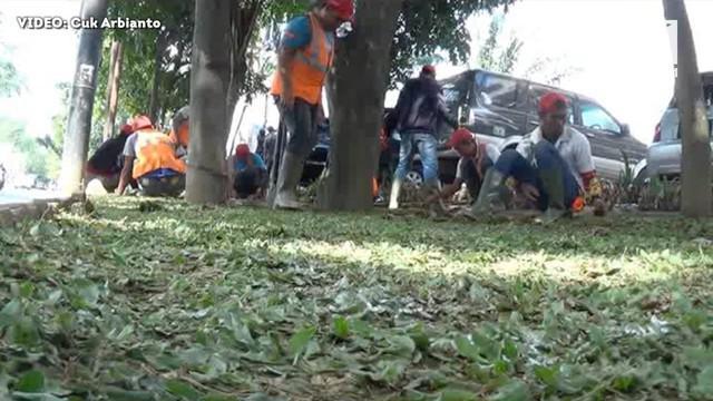 Kota Medan terus berbenah menyambut prosesi adat Kahiyang-Bobby.