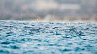Ilustrasi hujan (Foto: Unsplash/Max)