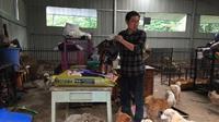 Zhang Kai dan anjing-anjingnya (Sumber: odditycentral)
