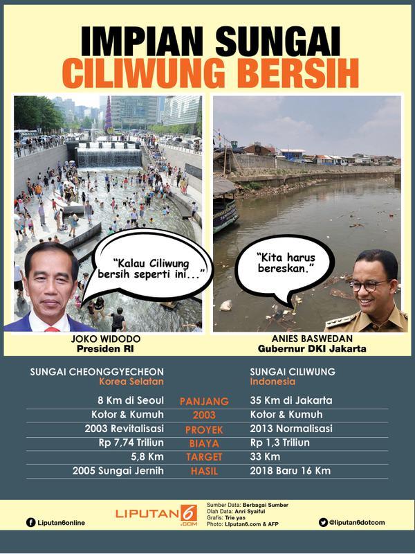 Infografis Impian Sungai Ciliwung Bersih. (Liputan6.com/Triyasni)