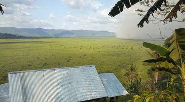 Kebakaran lahan hutan gambut di Kabupaten Kolaka Timur, sudah menghanguskan ratusan hektar hutan, Kamis (29/8/2019).(Liputan6.com/Ahmad Akbar Fua)