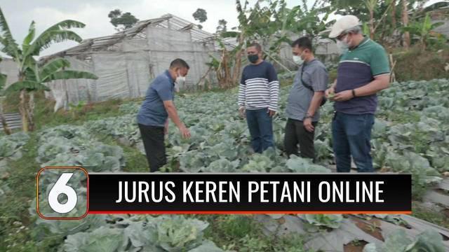 Situasi pandemi Covid-19 membuat Hary Permana yang tadinya adalah seorang karyawan perusahaan memilih bekerja sama dengan para petani di sejumlah daerah. Manfaatkan platform online untuk berjualan, demi kesejahteraan para petani.
