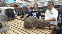 Calon gubernur Jawa Barat nomor urut 4 Deddy Mizwar. (Tim Media Demiz/Huyogo Simbolon)