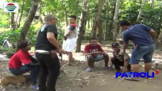 Atas laporan warga, polisi di Tulang Bawang, Lampung, gerebek arena judi sabung ayam di tengah kebun karet.