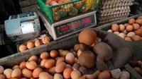 Seorang pedagang telur di kawasan Pasar Minggu tampak sedang memilih telur untuk ditimbang pada Rabu (04/06/14) (Liputan6.com/Miftahul Hayat)