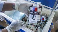 PMI Solo akan mengirim bantuan suplai darah kepada para korban gempa di Nusa Tenggara Barat.(Liputan6.com/Fajar Abrori)