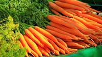 ilustrasi wortel  (sumber: Pixabay)