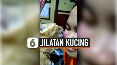 Seorang remaja memanfaatkan jilatan kucing untuk mengatasi jerawat pada wajahnya. Perawatan ini ia lakukan setiap hari dan telah berlangsung selama 3 bulan.