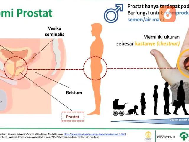 A prostatitis nem inni Krónikus prosztatitis DGPZH kezelése