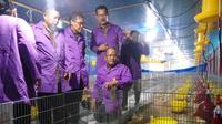 Kandang ayam tertutup atau closed house milik Fakultas Peternakan UGM menjadi kandang tertutup pertama bersandar internasional yang dimiliki oleh perguruan tinggi di Indonesia (Liputan6.com/ Switzy Sabandar)