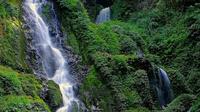 Air terjun Telun Tujuh di Kecamatan Batang Asai, Kabupaten Sarolangun, Jambi menjadi destinasi wisata alam yang patut dicoba karena masih sangat alami dan hampir tak tersentuh. (Foto: Istimewa/B Santoso)