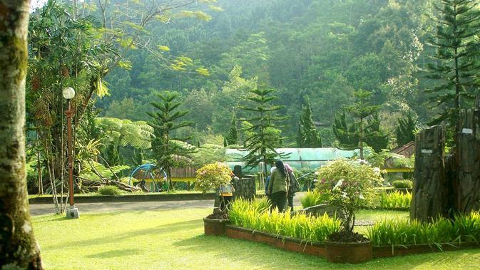 Ilustrasi – Pagi menakjubkan di Taman Lokawisata Baturraden, Banyumas. (Foto: Liputan6.com/Muhamad Ridlo)