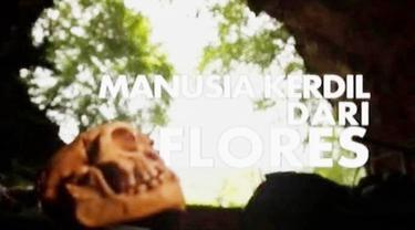 Manusia Kerdil Dari Flores