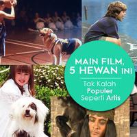Main Film, 5 Hewan Ini Tak Kalah Populer Seperti Artis. (Desain: Nurman Abdul Hakim/Bintang.com)