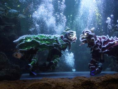 Atraksi barongsai dan liong dalam air bertajuk The Battle of Yin Yang di Aquarium Utama Seaworld Ancol, Jakarta, Senin (12/2). Pertunjukan ini digelar untuk menyambut Tahun Baru Imlek 2569. (Liputan6.com/Arya Manggala)