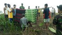 Kabel listrik yang digunakan sebagai perangkap hama di Aceh kembali memakan korban jiwa. (Liputan6.com/ Rino Abonita)