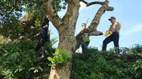 Kapolres Gowa, AKBP Shinto saat lakukan olah TKP Kasus Remaja Gantung Diri di Pohon Nangka (Liputan6.com/ Eka Hakim)