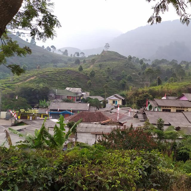 Kampung Naringgul Di Puncak Bogor Bakal Dihapus Dari Peta News Liputan6 Com
