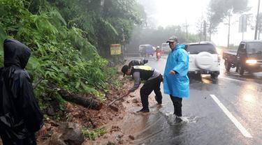 Cuaca buruk di Puncak Bogor tidak hanya menyebabkan bencana longsor dan pohon tumbang, tetapi juga berdampak pada kunjungan wisata.