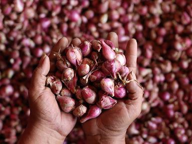 Seorang pedagang menunjukkan bawang merah dagangannya di Pasar Induk Kramat Jati, Jakarta, Selasa (2/4/2019). Sejumlah pedagang di Pasar Induk Kramat Jati mengaku harga bawang merah dan bawang putih relatif stabil, meskipun terjadi kenaikan harga di beberapa daerah. (Liputan6.com/Immanuel Antonius)