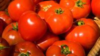 Dilengkapi dengan vitamin C dan lycopene fitokimia, tomat merangsang produksi asam amino yang dikenal sebagai karnitin. Penelitian telah menunjukkan carnitine membantu mempercepat kapasitas pembakaran lemak tubuh. (Istimewa)