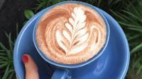 Jika Anda sedang berkunjung ke Bogor, jangan lupa untuk mampir ke Kuki Cafe & Resto.