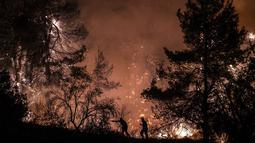 Petugas pemadam kebakaran berusaha memadamkan api di dekat desa Makrimalli di pulau Evia, timur laut Athena, Yunani (13/8/2019). Empat pesawat pemadam kebakaran Kanada dari Kroasia dan Italia akan dikerahkan pada 14 Agustus setelah Yunani meminta bantuan UE. (AFP Photo/Angelos Tzortzinis)