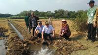 Dirjen Sarana dan Prasarana Pertanian (PSP) Kementerian Pertanian (Kementan) Sarwo Edhy melakukan kunjungan kerja di wilayah yang memiliki potensi lahan kekeringan