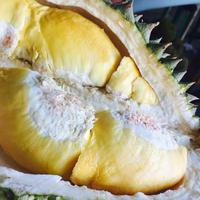 durian/copyright: unsplash/gliezl bancal