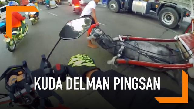 Seekor kuda delman jatuh pingsan di jalan karena kelelahan. Tak hanya itu, faktor cuaca yang cukup ekstrem di kota Manila juga mempengaruhi sehingga membuat kuda tersebut pingsan.