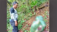 Kerangka korban pembunuhan di Aceh yang diduga dibunuh anak dan istri saat sebelum dievakuasi. (Foto: Istimewa)