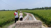 Kegiatan RJIT di Desa Bumi Asri, Kecamatan Palas, Lampung Selatan, dilakukan oleh Kelompok Tani Karya Mekar. (Dok. Kementerian Pertanian)