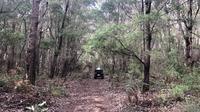 Hutan Boranup, Taman Nasional Leeuwin Naturaliste, Margaret River, Australia Barat (Liputan6.com/Shinta NM Sinaga)