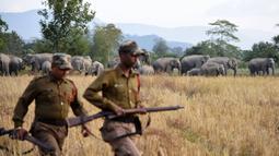 Petugas hutan mengawasi kawanan gajah saat masuk ke permukiman warga Desa Bahampur di kabupaten Nagaon, 155 km timur Guwahati, India (27/12). (AFP Phoyo/Biju Boro)