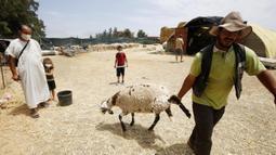 Seorang pria bekerja di sebuah kios penjualan domba kurban menjelang Hari Raya Idul Adha di Aljir, Aljazair, Minggu (12/7/2020). (Xinhua)