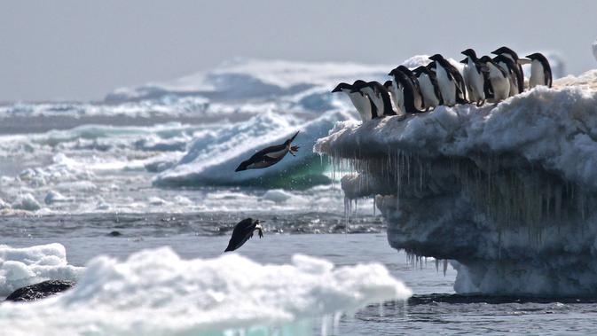 Temperatur Anjlok hingga -89,2 Celcius di Antartika