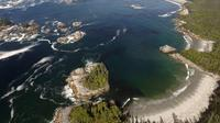 Area pantai di pulau Cavert, tempat ditemukannya kumpulan jejak kaki kuno berusia 13.000 tahun (Keith Holmes/Hakai Institute/AFP)