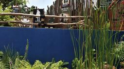 Suasana Taman Robika di Pintu Air Manggarai, Jakarta, Kamis (14/3). Taman ini merupakan gabungan dari nama sang pencetus, yakni Robert selaku Kepala Bidang Aliran Tengah SDA dan Ika sebagai Kepala Seksi Bidang Aliran Tengah. (merdeka.com/Iqbal S. Nugroho)