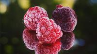 ilustrasi raspberry (instagram/holmberg1carin)