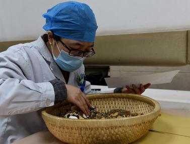 Obat Tradisional China