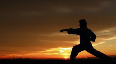 Ilustrasi kung fu