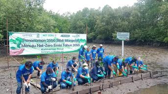 Menanam Puluhan Ribu Mangarove Menuju Net-Zero Emisi 2050