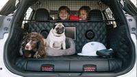Nissan perkenalkan X-Trail konsep yang ramah terhadap hewan peliharaan (Foto: thetimes.co.uk).