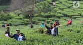 Pasangan muda mudi berfoto di kawasan wisata Kebun teh Puncak Kabupaten Bogor Jawa Barat, Sabtu (31/10/2020). Libur panjang peringatan Maulid Nabi Muhammad SAW dimanfaatkan warga untuk mengunjungi lokasi-lokasi wiisata. (Liputan6.com/Helmi Fithriansyah)