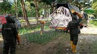 Sejumlah anggota Brimob Polda Sulawesi Barat memasang kawar berduri di RSUD Regional Sulawesi Barat.