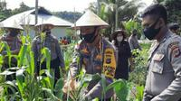 Kapolres Talaud meninjau lokasi kebun warga yang siap menunjang program desa/kampung tangguh.
