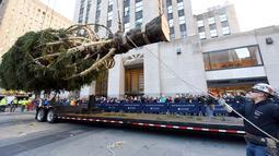 Pekerja menggunakan alat berat untuk memasang pohon Natal raksasa di Rockefeller Center, kota New York, Sabtu (10/11). Pohon cemara jenis The Norway Spruce ini memiliki tinggi 22 meter dengan berat 12 ton.  (Diane Bondareff/AP for Tishman Speyer)