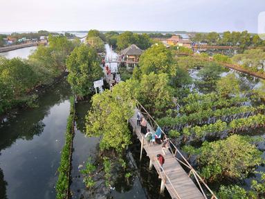 Wisatawan berjalan di jembatan saat mengunjungi Taman Wisata Hutan Bakau (Mangrove) di Desa Segarajaya, Tarumajaya, Bekasi, Jawa Barat (24/11/2019). Taman wisata hutan bakau ini memiliki ikon Jembatan Cinta. (merdeka.com/Iqbal S. Nugroho)