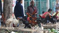 Pedagang tengah menjual ayam kampung di Jakarta, Selasa (12/6). Para pedagang ayam musiman tersebut menjual ayam dengan kisaran harga 100 ribu hingga 250 ribu untuk kebutuhan ayam potong lebaran. (Liputan6.com/Angga Yuniar)