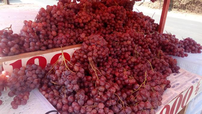 Buah anggur asal Cina di Garut (Liputan6.com/Jayadi Supriadin)#source%3Dgooglier%2Ecom#https%3A%2F%2Fgooglier%2Ecom%2Fpage%2F%2F10000